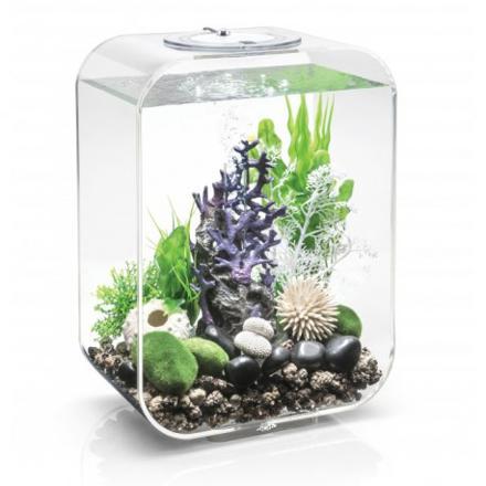 aquarium biorb