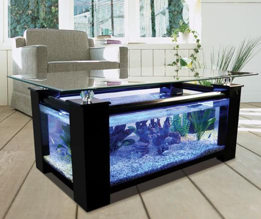 aquarium table de salon