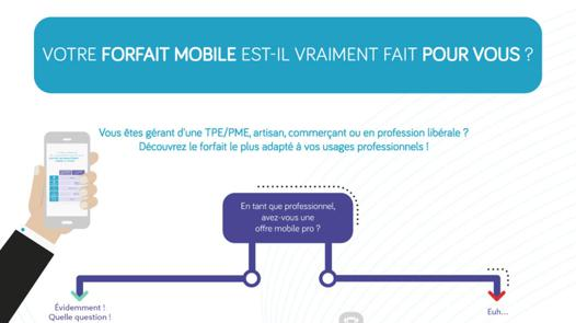forfait mobile pro