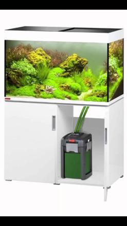 meilleur marque aquarium