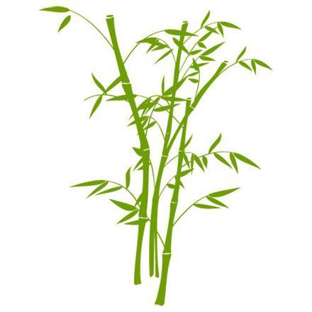 stickers bambou vert