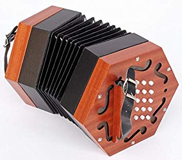 accordéon concertina