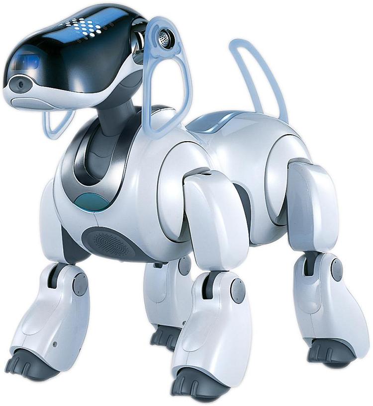 animaux robot