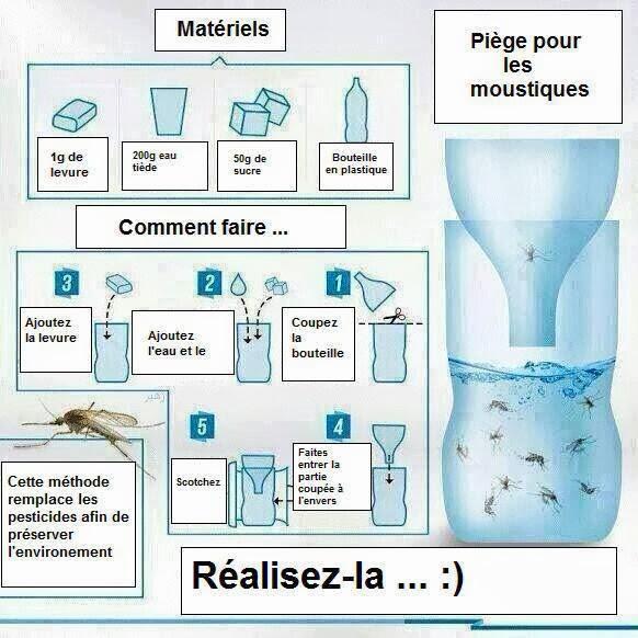 anti moustique efficace maison