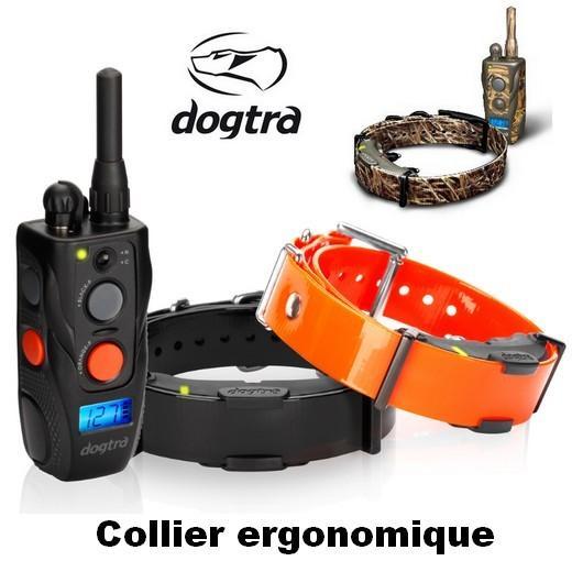 appareil de dressage pour chien