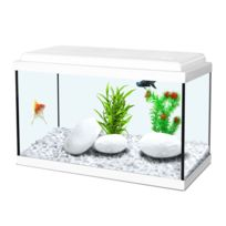 aquarium pour poisson rouge pas cher