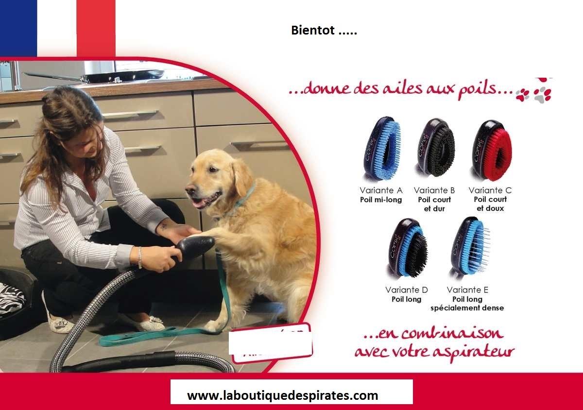 brosse aspirateur chien