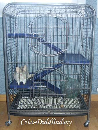 cage a chinchilla pas cher