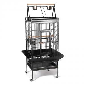 cage perroquet gris du gabon
