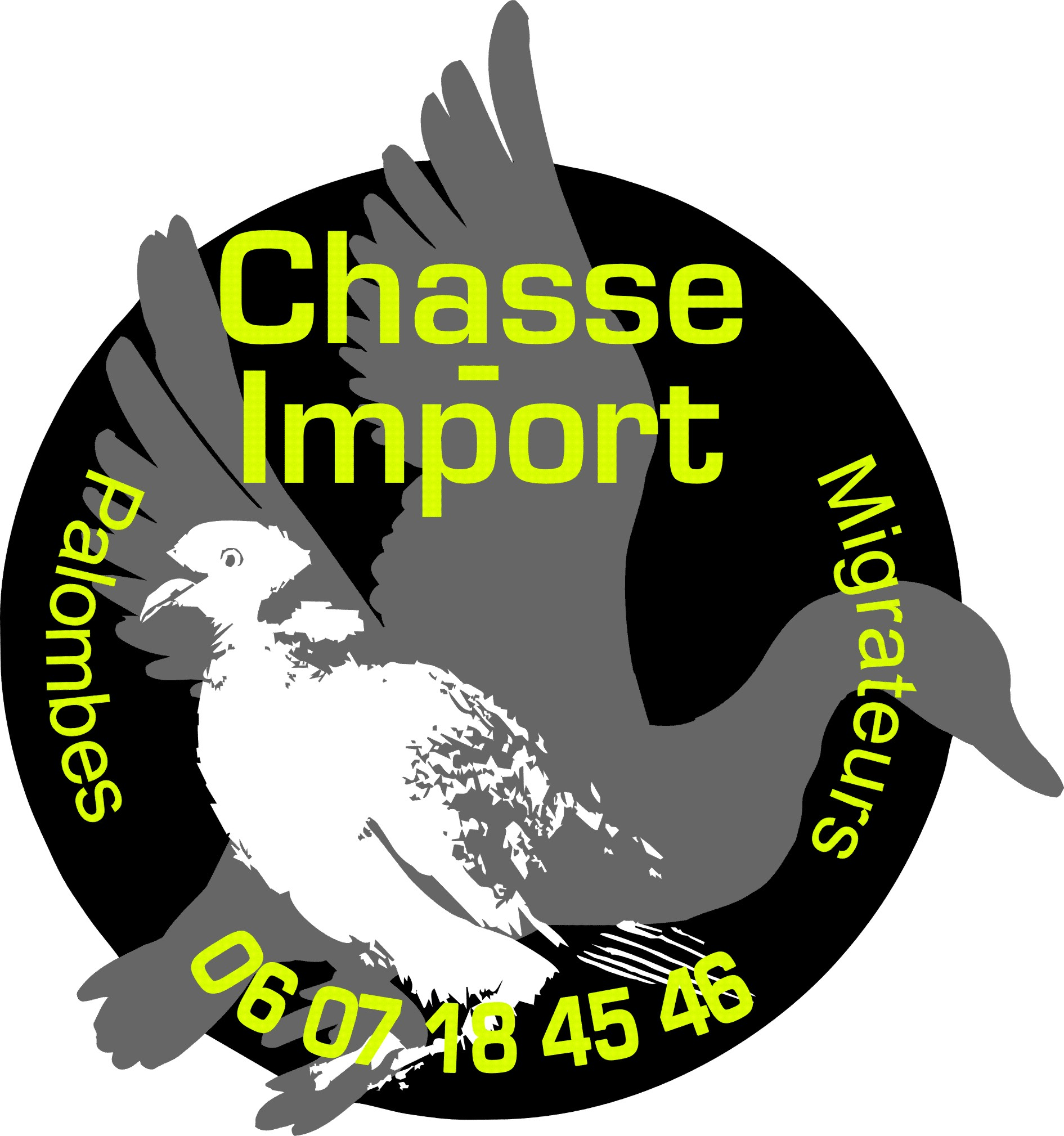 chasse import
