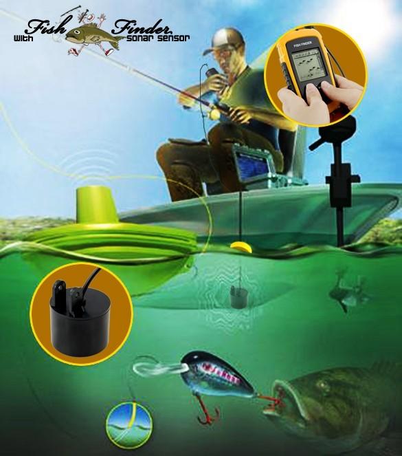 detecteur de poisson professionnel