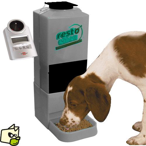 distributeur automatique croquettes chien