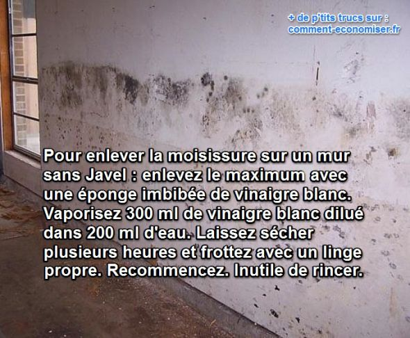 enlever moisissure sur mur