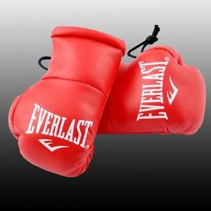 everlast mini boxing gloves