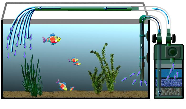 filtration externe aquarium