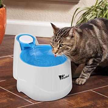 fontaine eau animaux