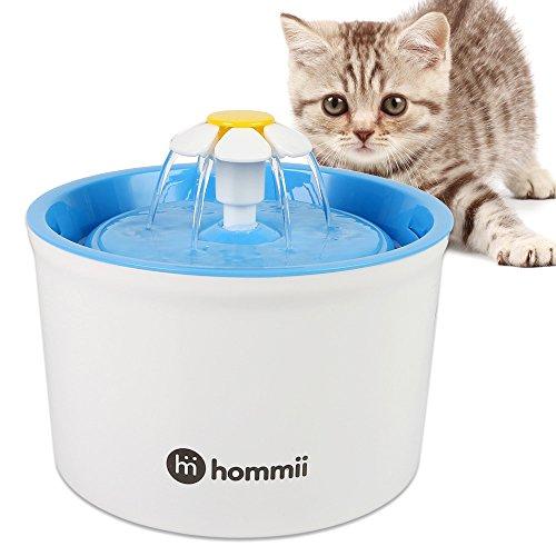 fontaine eau chat amazon