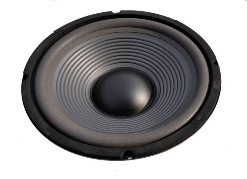 haut parleur hifi 25 cm