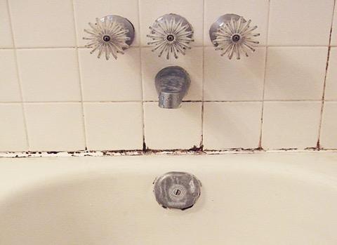 moisissure douche