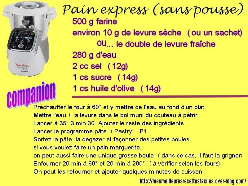 pain companion moulinex