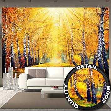 papier peint automne