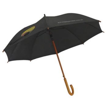 parapluie breaker