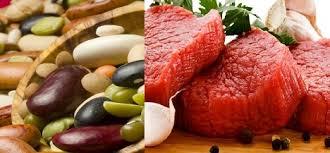 protéines animales et végétales