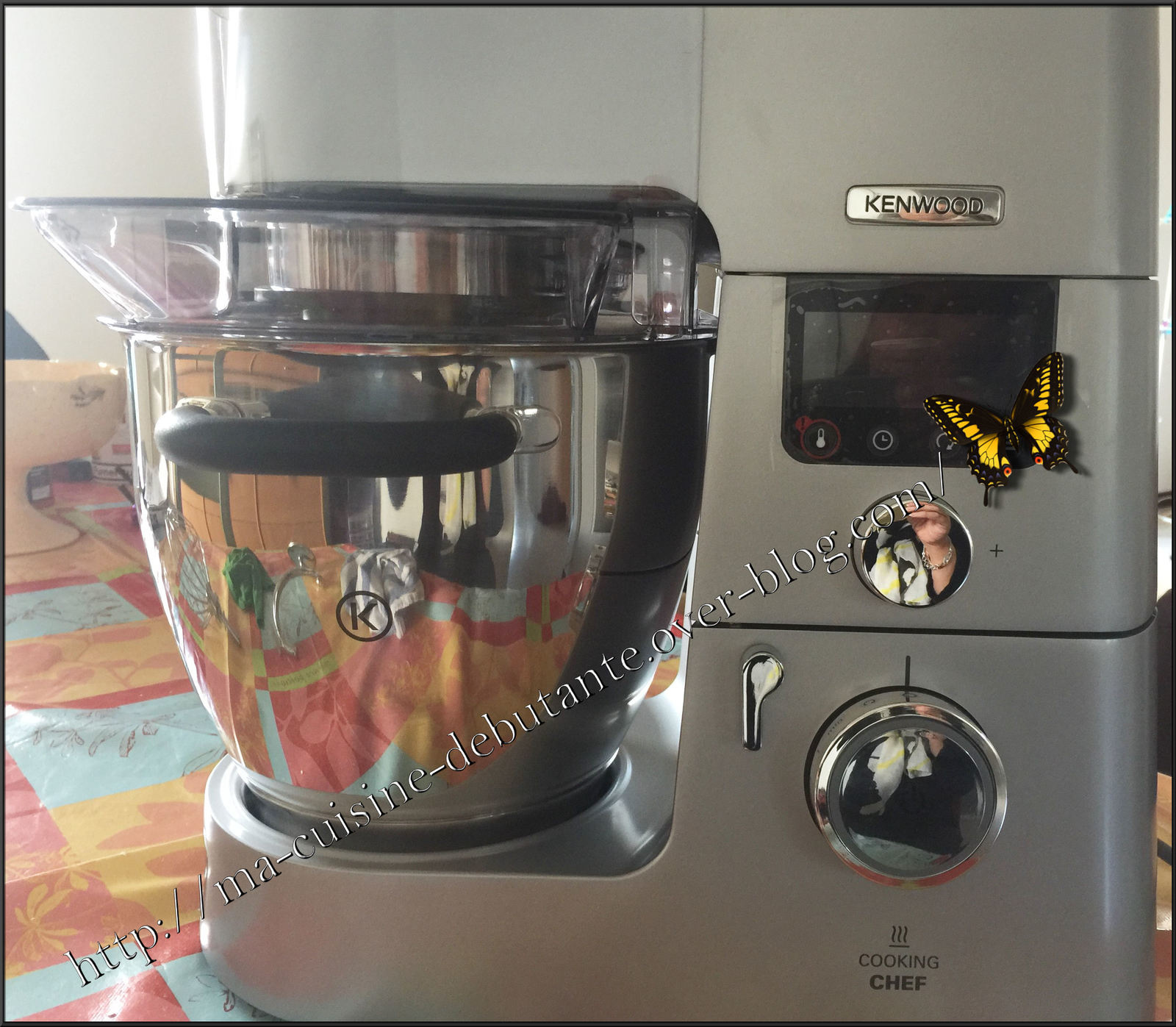 recette kenwood cooking chef gourmet