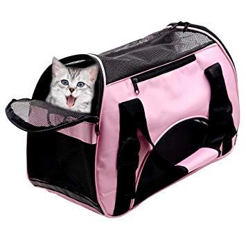 sac de transport pour chat amazon