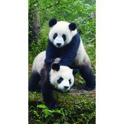 serviette de plage panda