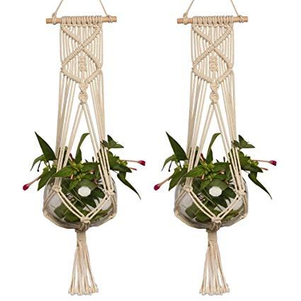 suspension plante en corde