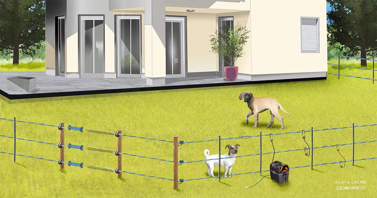 systeme cloture electrique pour chien