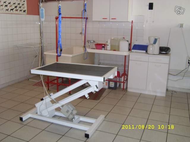 table de toilettage occasion