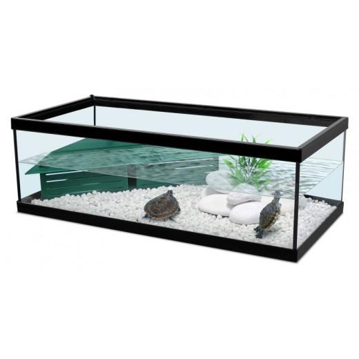 terrarium pour tortue d eau