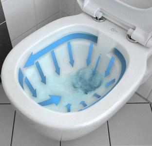 wc sans bride